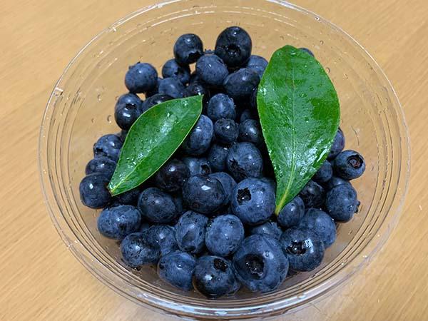 blueberry-yuppie_9396b.jpg