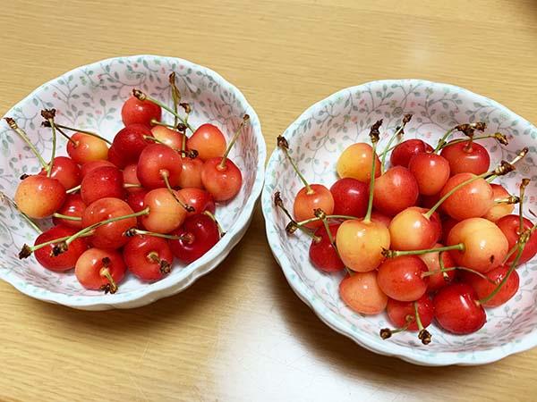 cherry_5745a.jpg