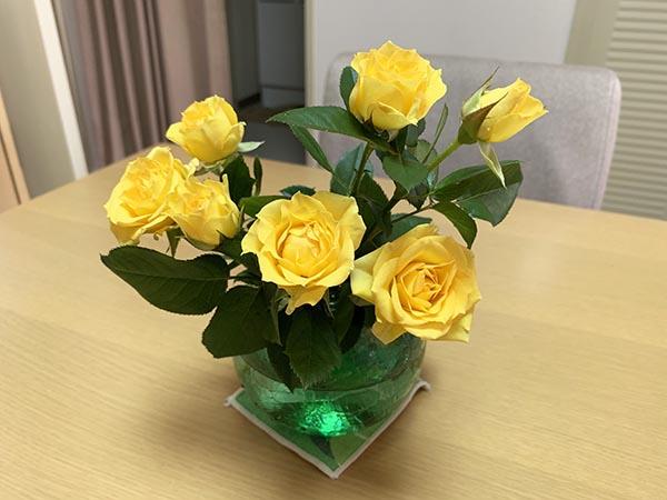 flowers_2851a.jpg