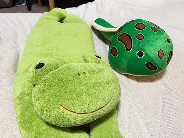 frog&tuno-otama_6716a.jpg