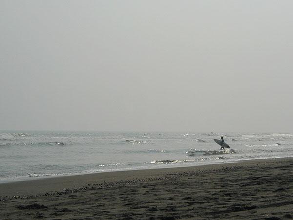 sea-yuppie_PB020109a.jpg