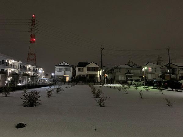 snow_0356a.jpg