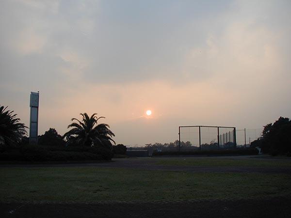 sunset-yuppie_PB020135a.jpg