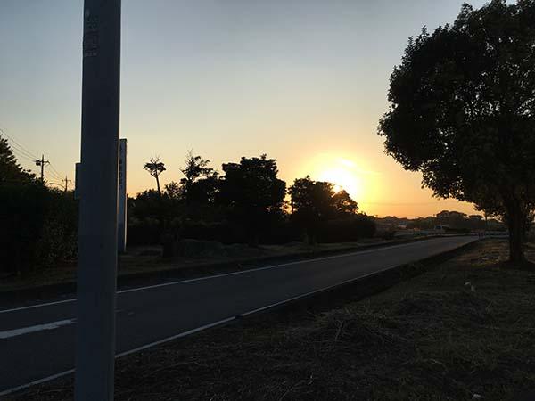 sunset_9894a.jpg